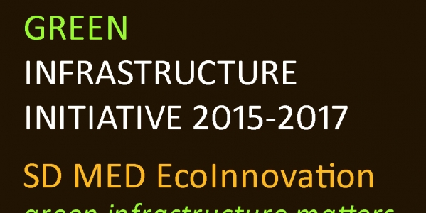 Green and blue infrastructure strategies :Nature-based solutions for cities and territories
